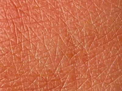 При этом фотографируется участок кожи объекта, разбивается на несколько более мелких блоков, где...