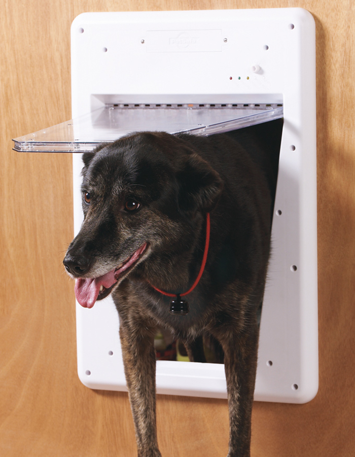 PetSafe Smart Door