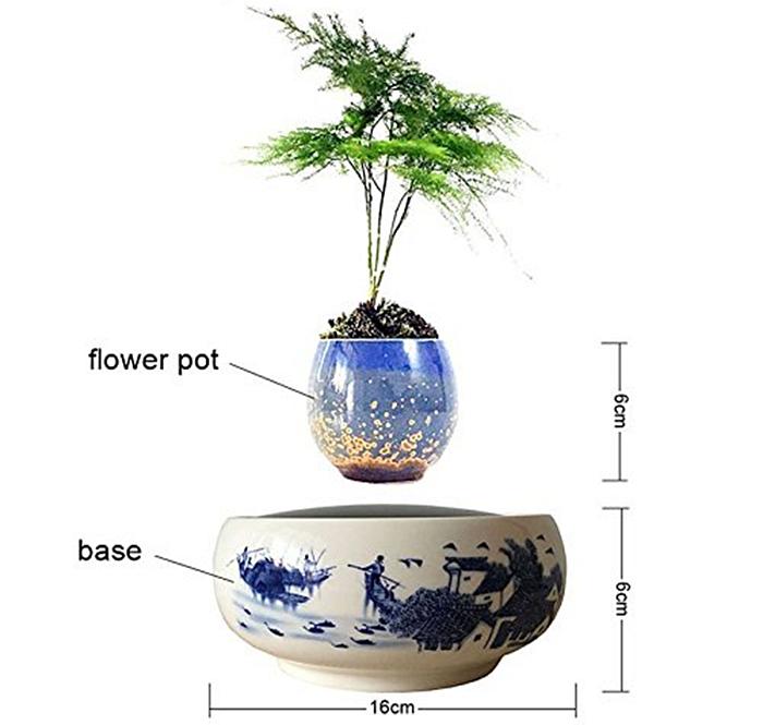 Levitating Floating Bonsai