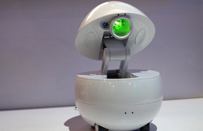 Desktop Companion Robot